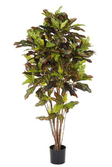 Croton exellent kunstplant kamerplant
