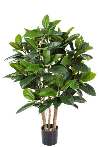 Ficus elastica kunstplant