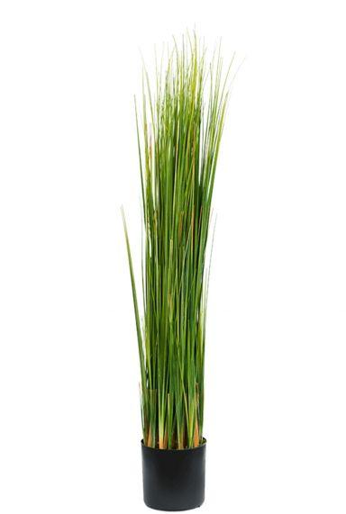 Grasplant kunstgras nepplant