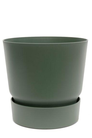 Groene pot kamerplant