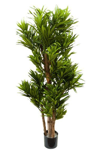 Grote kunstboom dracaena