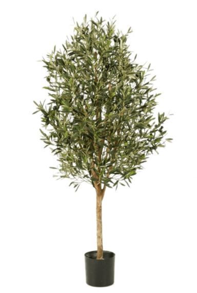 Grote olijf kunstbomen