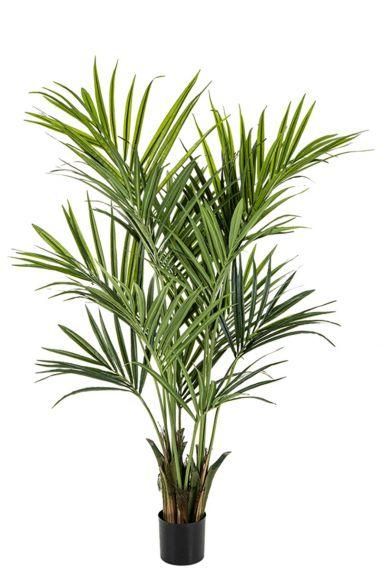 Kentia palm kunstplant 2