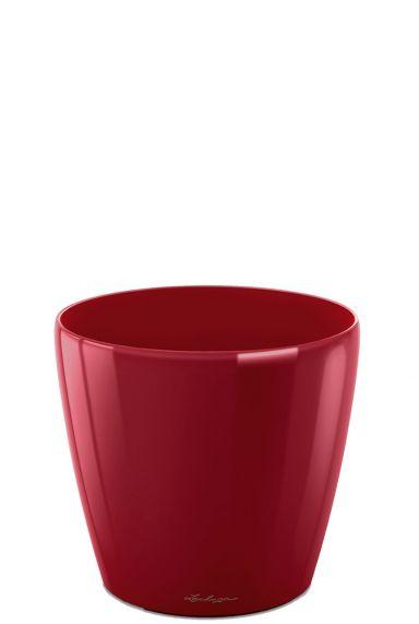 Kleine rode pot lechuza