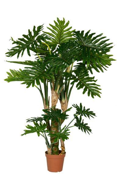 Kunstboom zijdeplant philodendron