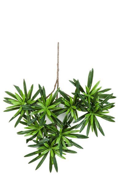 Kunsttak podocarpus groen