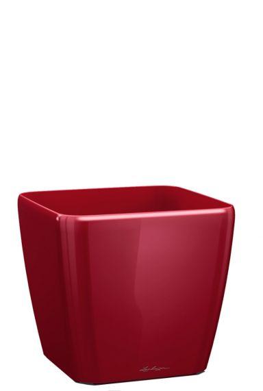 Lechuza quadro rood 28