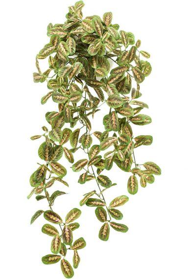 Maranta kunstplant zijde