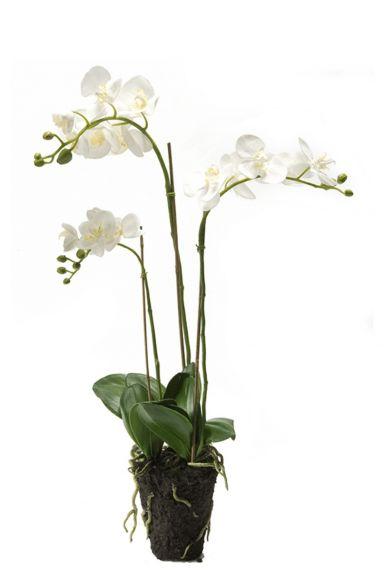 Witte orchidee kunstplant