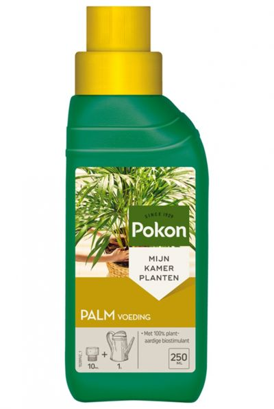 Pokon palmenvoeding