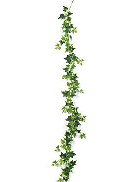 Variegated ivy garland