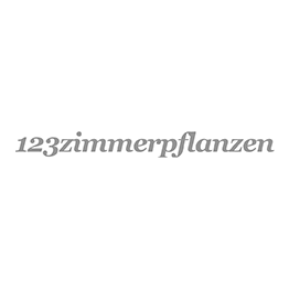 Lechuza Cubico Zwart glans