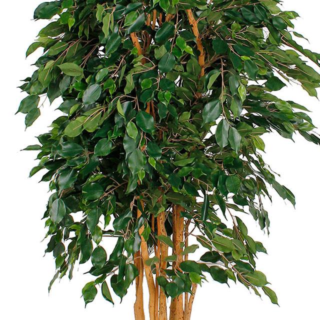 Kunstbäume kaufen?