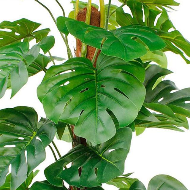 Kunstpflanzen kaufen?